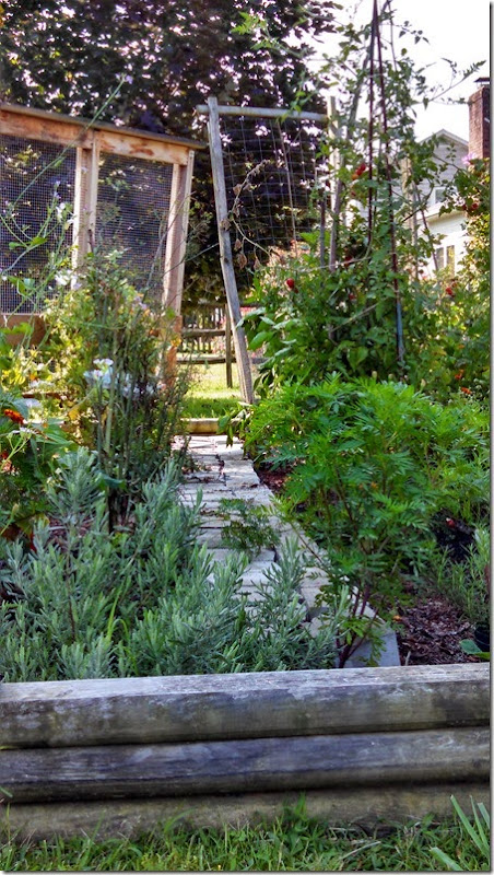 Garden 08 (12)