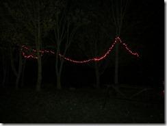 lights 018 (800x600)