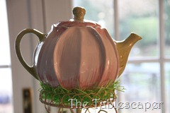 Senior Tea 003