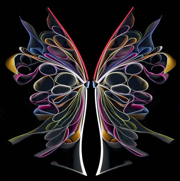 cara-barer-butterfly-2