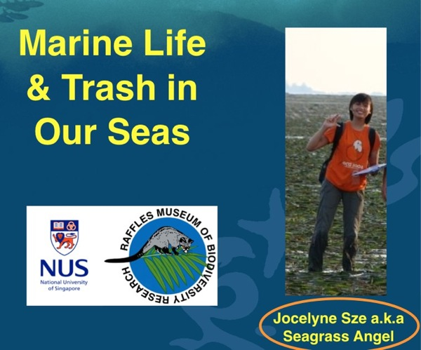 PowerPoint Slide Show   Marine Talk Queenstown Pri  23 April 2012 ppt 2
