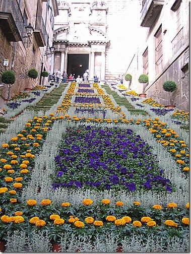 temps de flors (1)