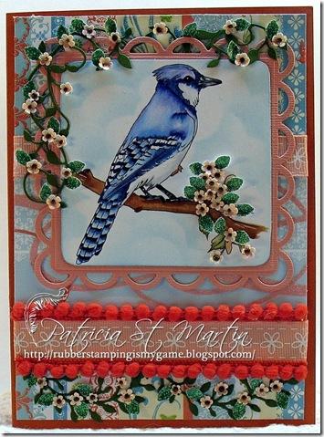 Blue Bird 2012 CFM