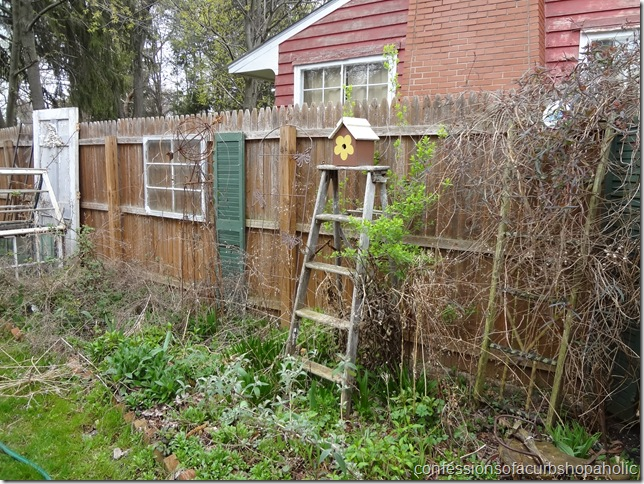 secret garden 039