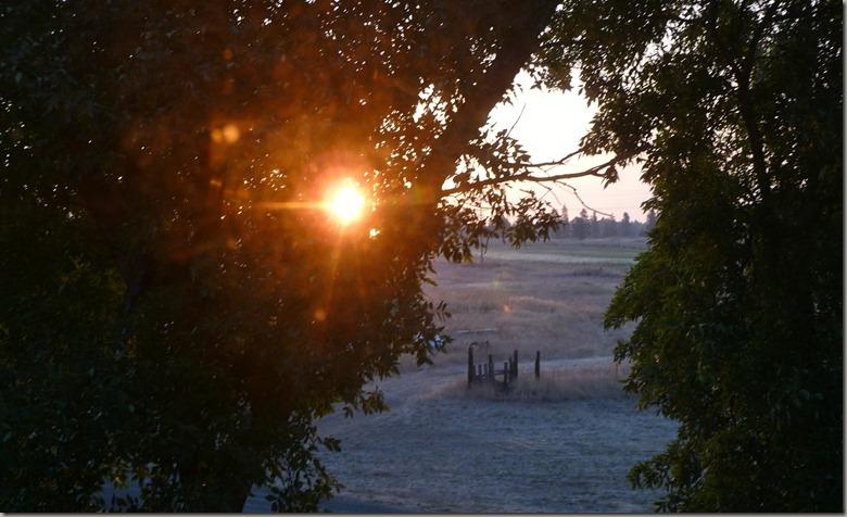 sunrises 004