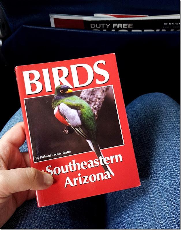 Ellen bird book