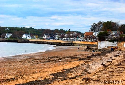 5. Gloucester beach-kab