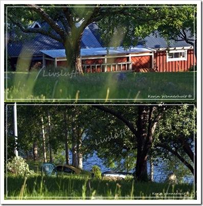 Gräsperspektiv2bild