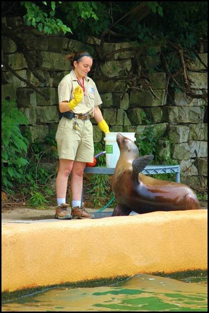 Zoo4 410