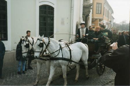 Imagini Ungaria: cu caleasca prin Szentendre