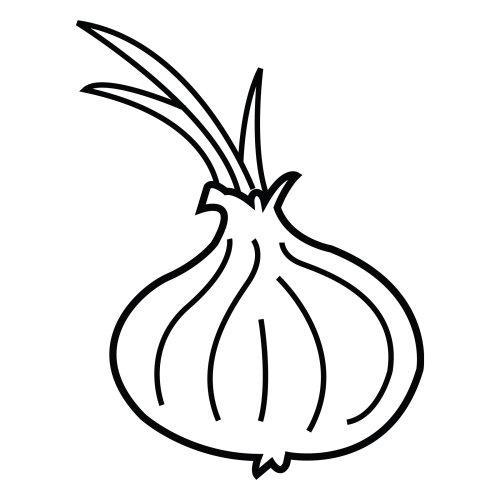 Dibujo de cebolla para colorear  Imagui