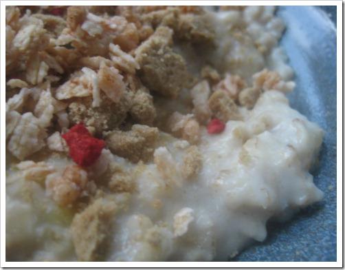 oatmeal 027