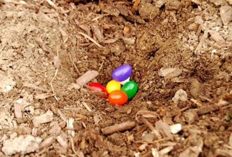 2012-03-14-jelly[1]