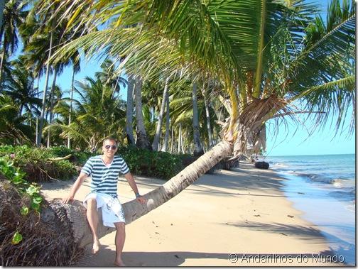 Praia do Patacho Coqueiros Praia Deserta Alagoas Brasil