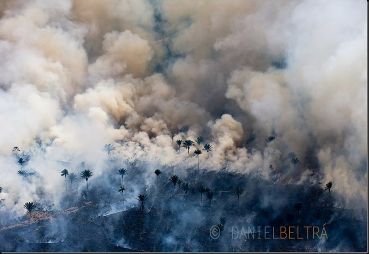 Man made fires to clear the land for cattle or crops. Sao Felix Do Xingu Municipality, Para State, Brazil.<br />