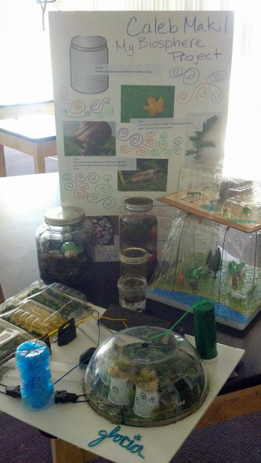 Water Cycle Projects For 7th Grade Biosphere projects