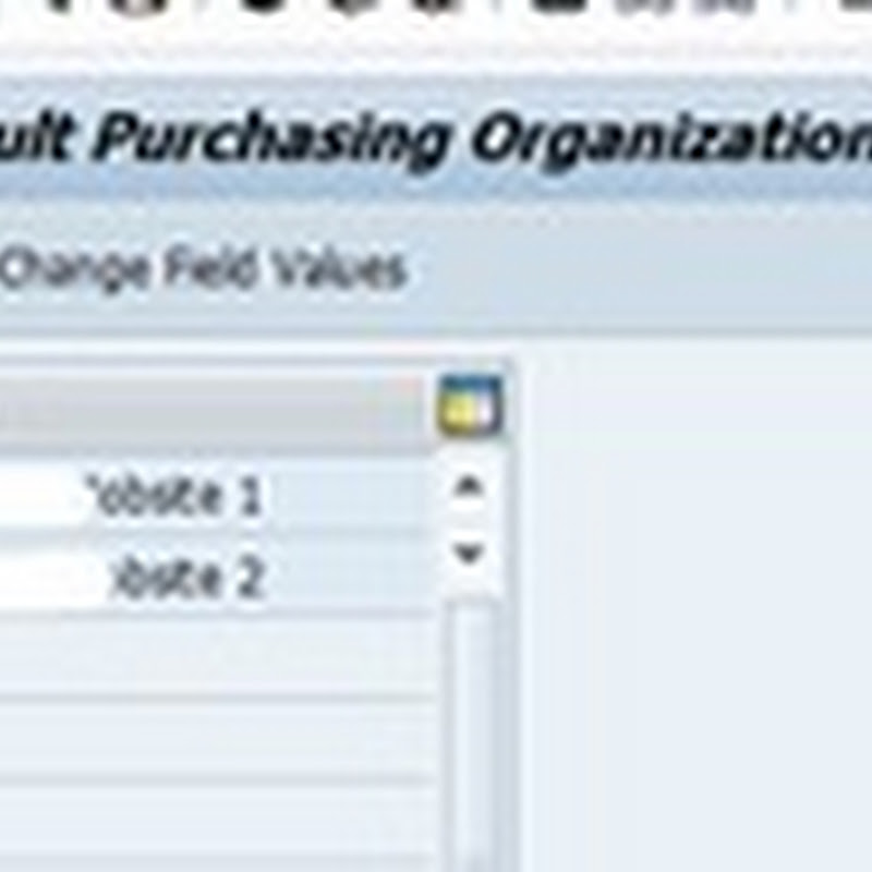 Purchasing info record not found in purchasing organization 1000
