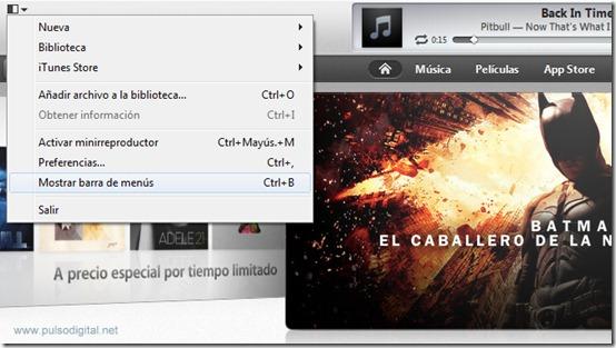 Sincronizar en iTunes 11