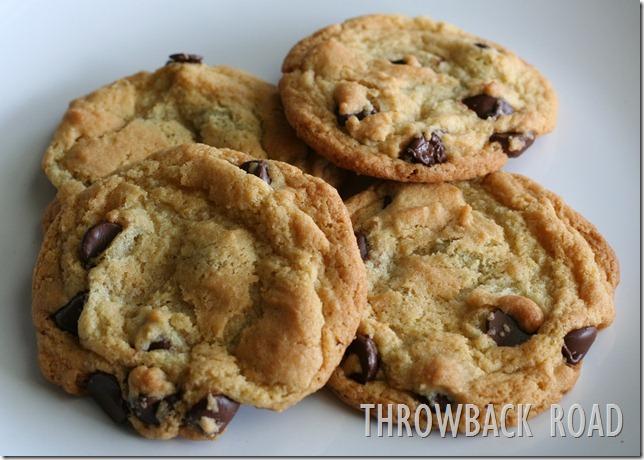 cookie 040