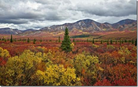 autumn-colors-fall-017