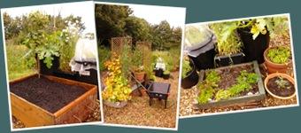 View Fairlie organic garden