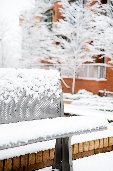 Snow on Sunday-4945