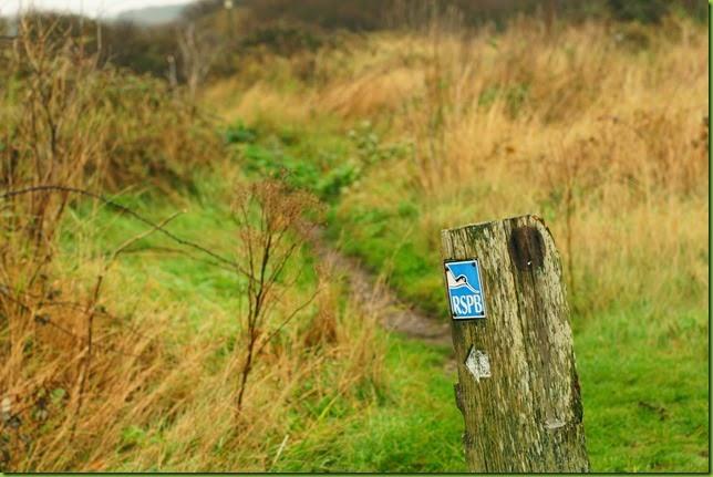 Aldeburgh to Thorpeness coastline