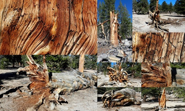 Lone Pine, Alabama Hills, CA1