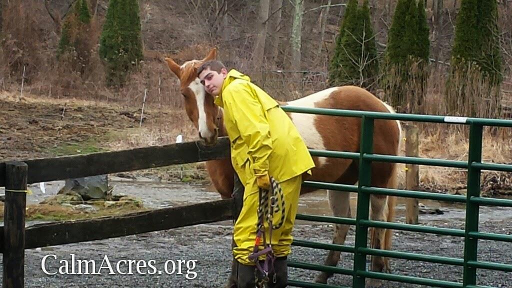 B Calm Acres Horse hugs