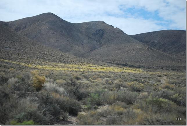 11-04-13 D DV Trip to Strozzi Ranch (35)