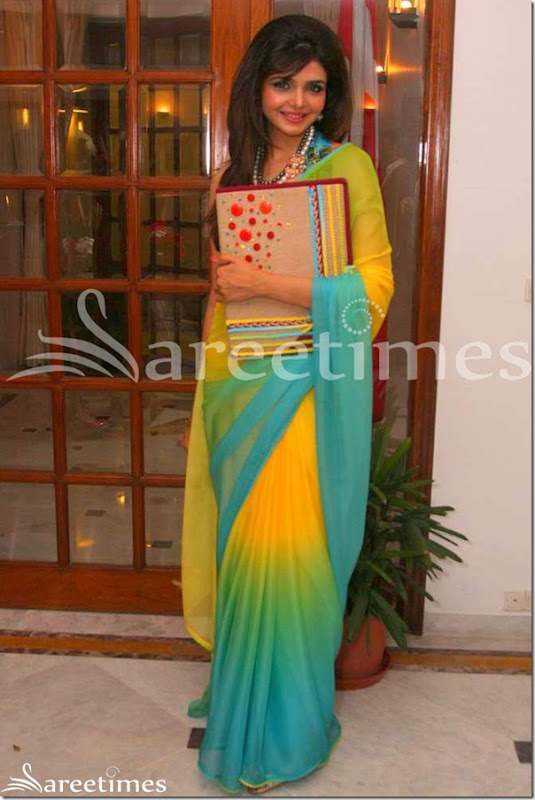 Shweta_Tiwari_Dual_Color_Saree