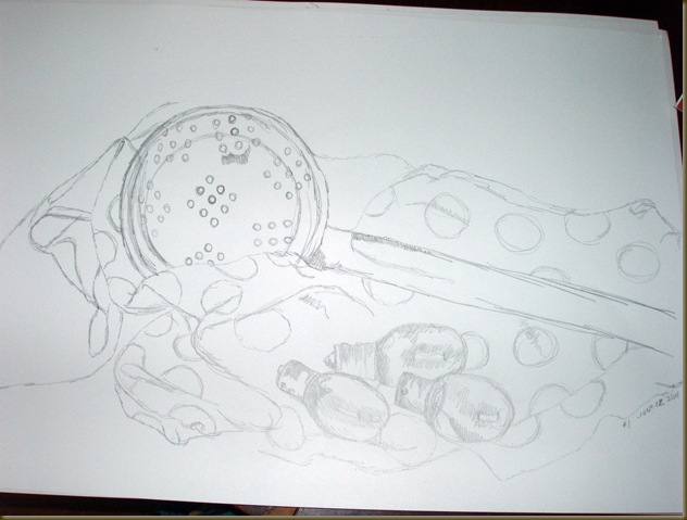 100 drawings drawing one_picnik