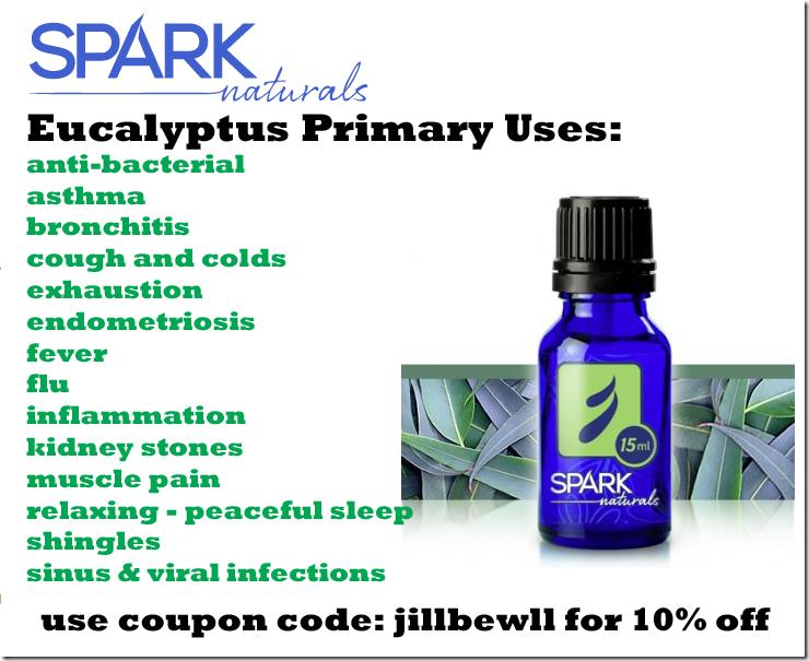 eucalyptus-SN-jill