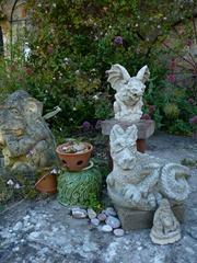 garden june 2011 012