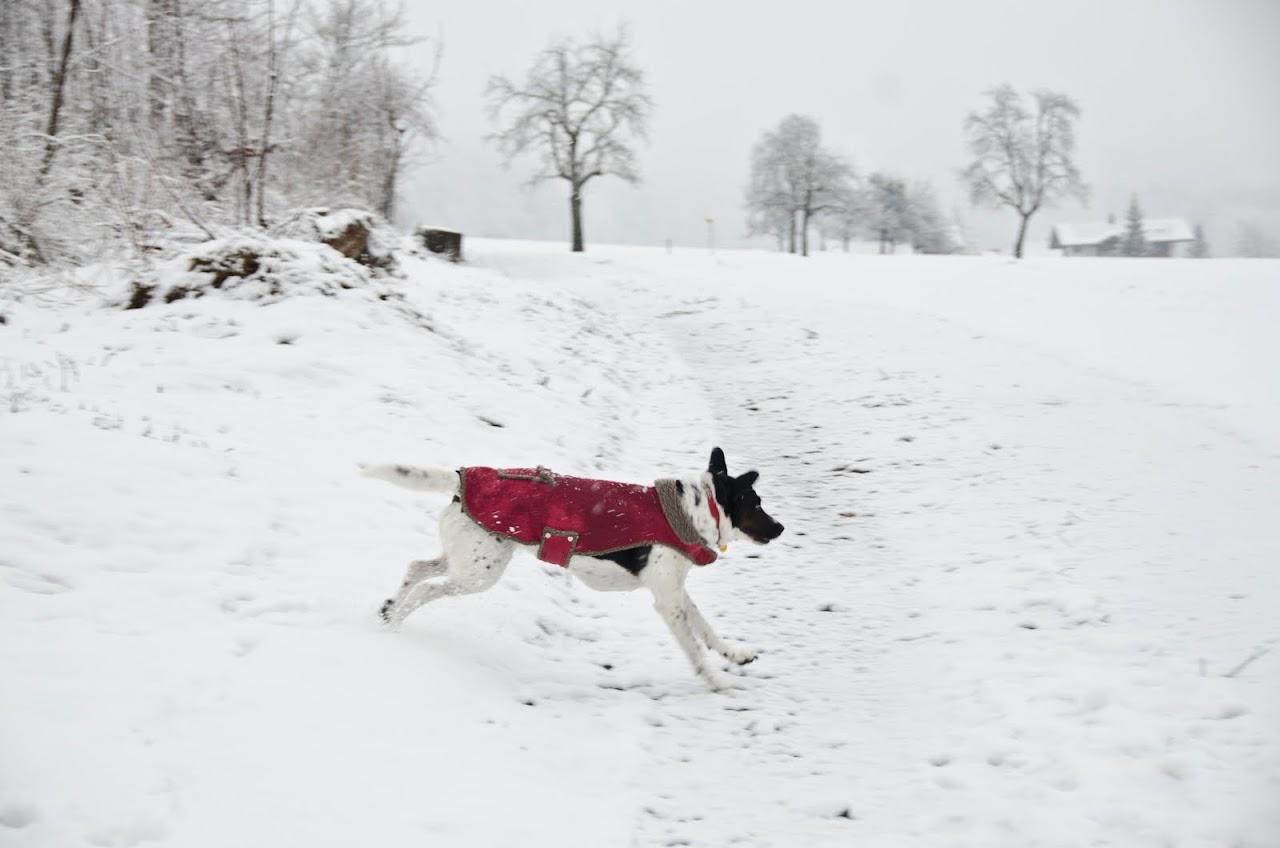 Abby at a park