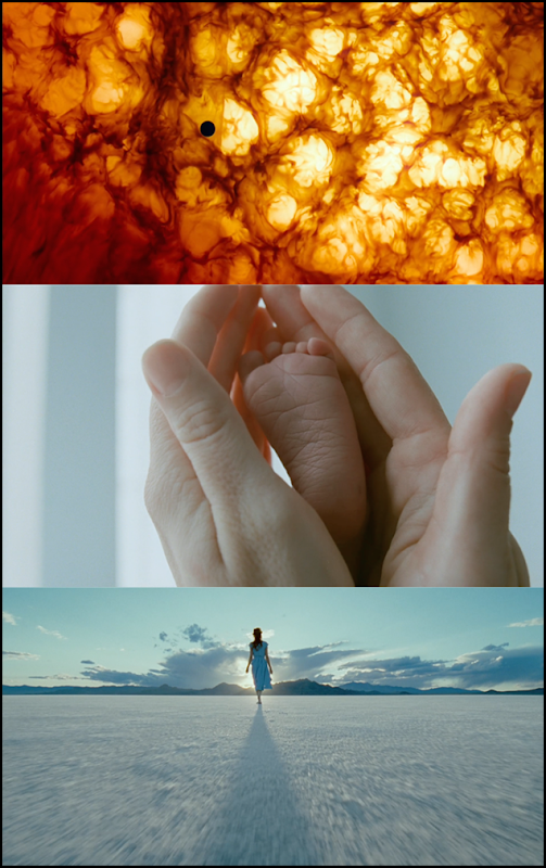 Tree of Life Cinematography