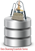 Data Cleansing Essentials Series