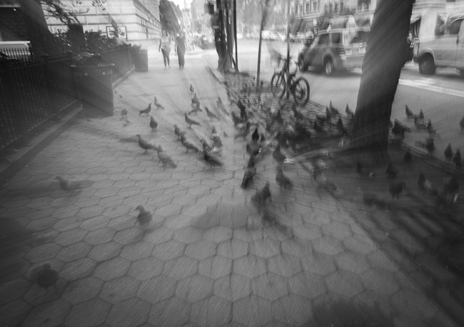 Pigeon Ghosts-1