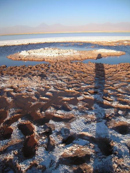 Excursie in Atacama, Chile: Ojos del Salar