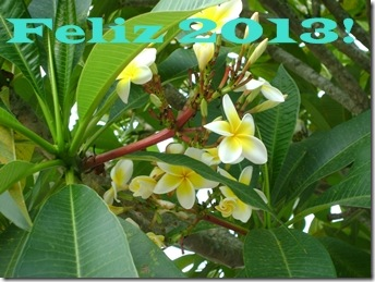 Feliz20132