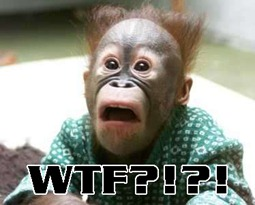 wtf-monkey
