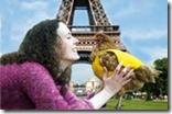 Parigi-e-la-gallina