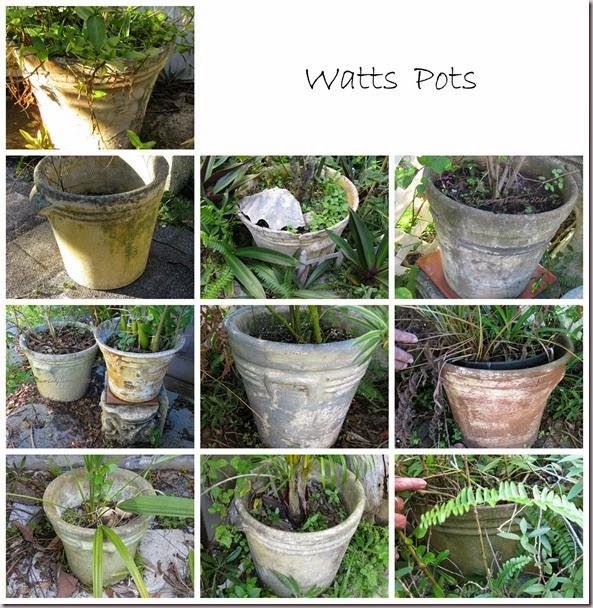 Watts-Pots
