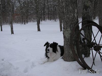 Feb 23 snow