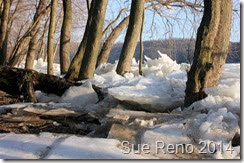 Ice Jam on the Susquehanna River, photo by Sue Reno