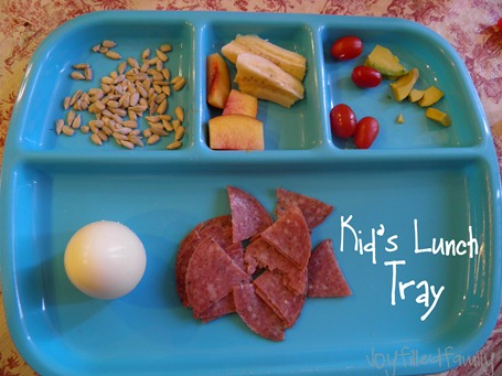 kids lunch tray