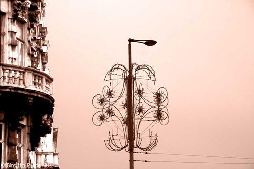 street_20111120_xmaslight