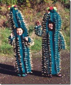 8204_Chaudiere_Costume_Cactus_jpg-550x0