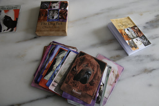 Why, Franny, The Dog Pack is a deck of cards with different dog breeds printed on them.  It says that you use them like tarot cards to get advice.  I thought it would be fun to play with them on a rainy day, like today.