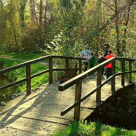 Park Maksimir by Tihomir Beller - City,  Street & Park  Vistas ( park, forest stream, city )